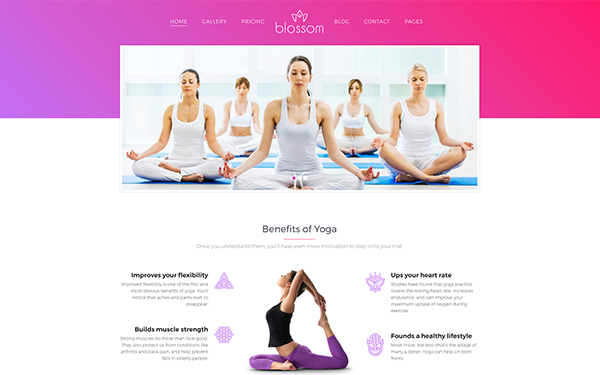 Yoga Club and Meditation WP Themes