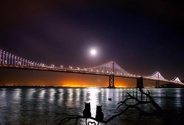 San Francisco HD Wallpaper, San Francisco HD Wallpapers, San Francisco Wallpaper HD