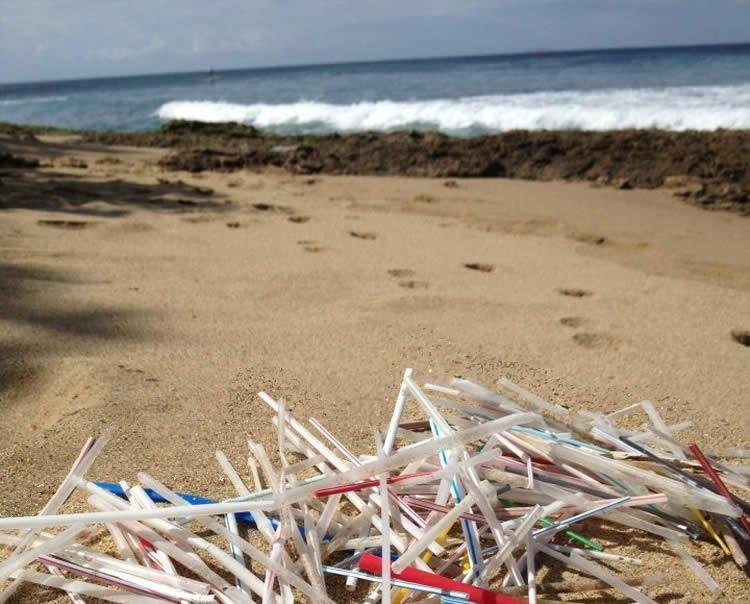playa sorbetes pajitas