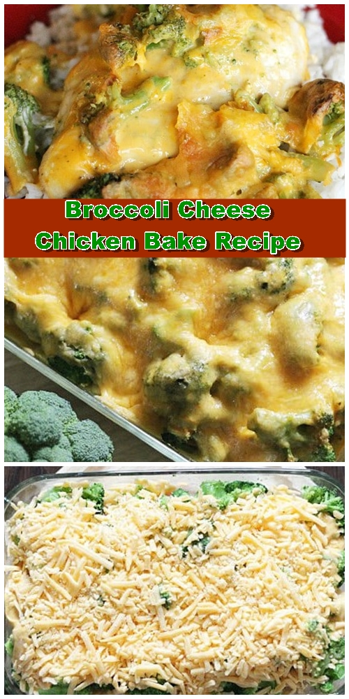 Chicken Broccoli Cheese Bake Recipe