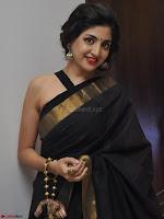 Poonam Kaur Saree New Pics 006.jpg