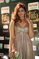 Telugu Actress Aarthi in Deep Neck Backless Golden Gown at IIFA Utsavam Awards 2017 Exclusive 37.JPG
