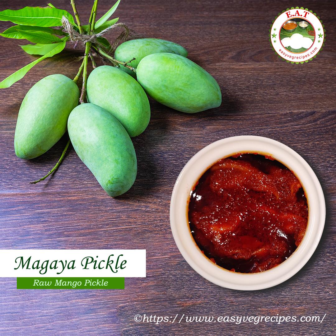Magaya Pickle