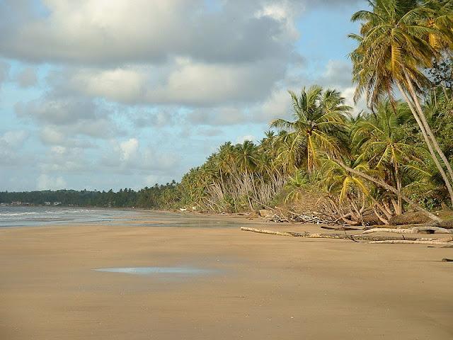 Mayaro Beach, di daerah tenggara Trinidad