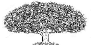 contoh pengerjaan psikotes menggambar pohon