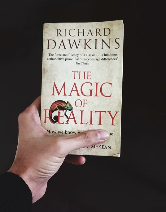 review of magic of reality