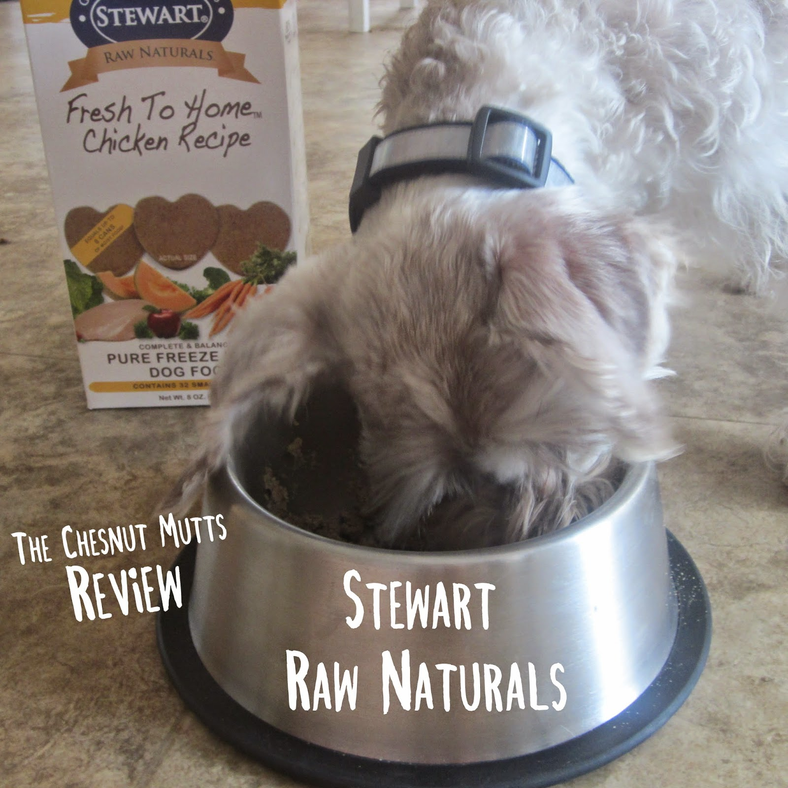 Review Stewart Raw Naturals The Chesnut Mutts