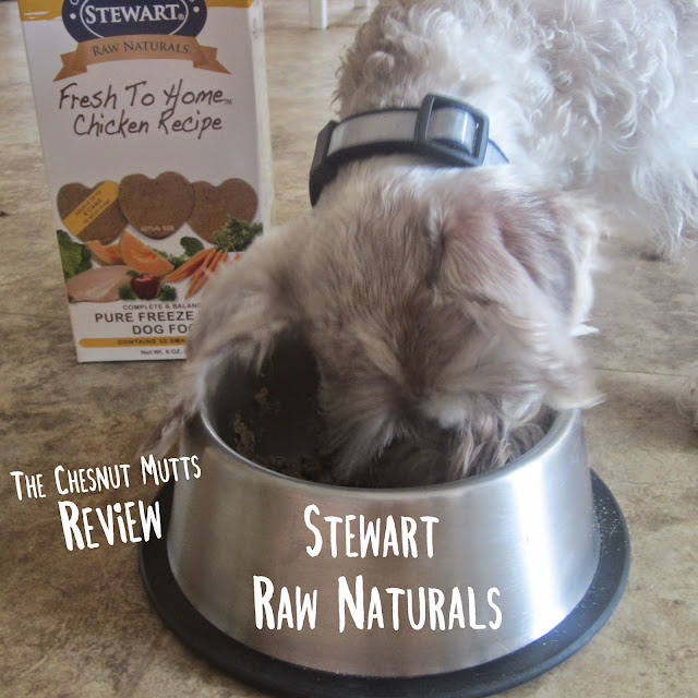 The Chesnut Mutts Review. Stewart Raw Naturals