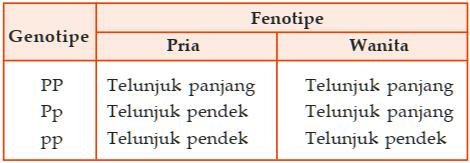 Gen jari telunjuk - contoh faktor yang mempengaruhi gen