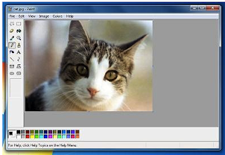 Download Paint XP Standalone Offline Installer