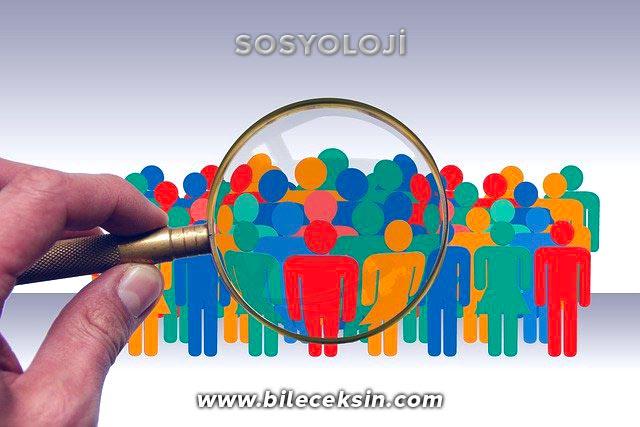Sosyoloji Bölümü: Nedir?, Dersleri, İş İmkânları, Geleceği ve Maaşı