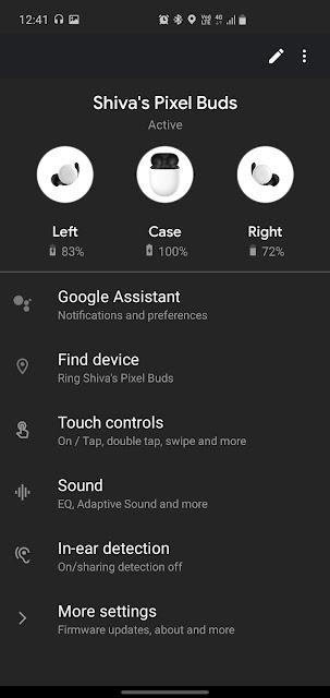 Google Pixel Buds 2 App view