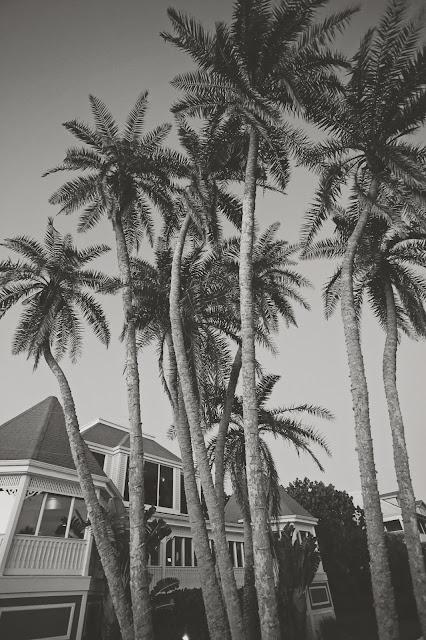 Casa Ybel Beach Resort
