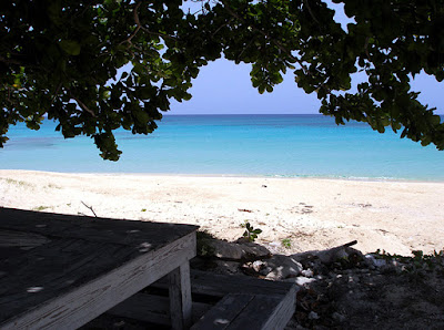 Shady hangout spot by the sea, Inagua, Bahamas.