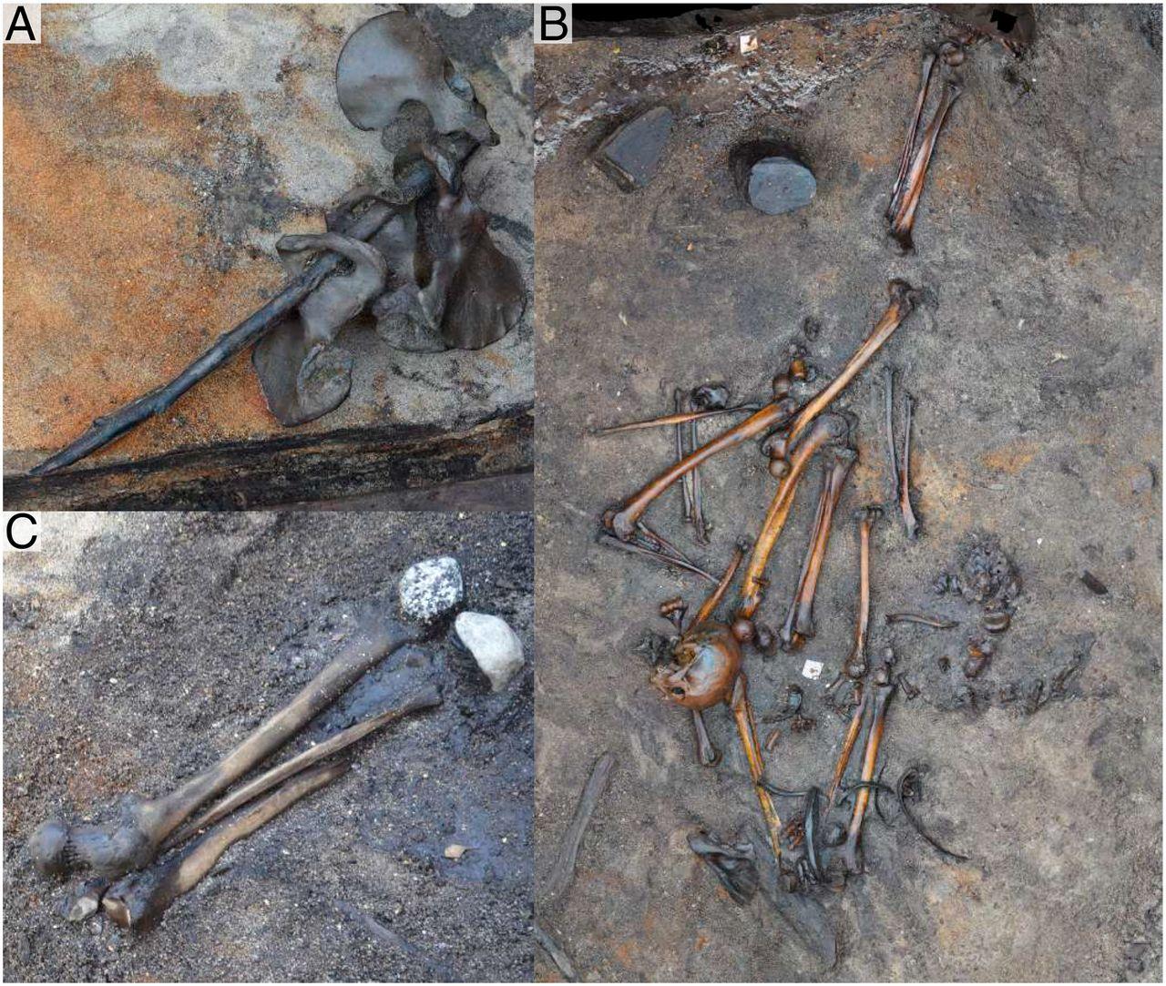 Ejemplos de los hallazgos colocados de forma estructurada. Foto: Peter Jensen.