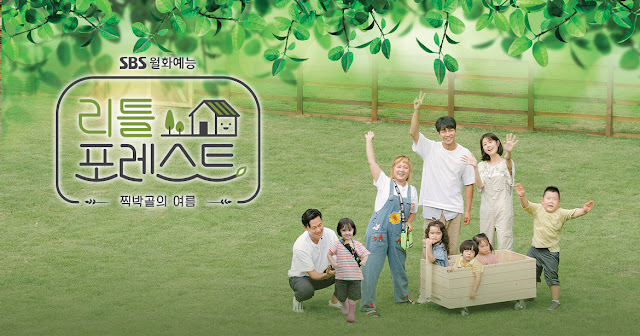 Download Variety Show Korea Little Forest Batch Subtitle Indonesia