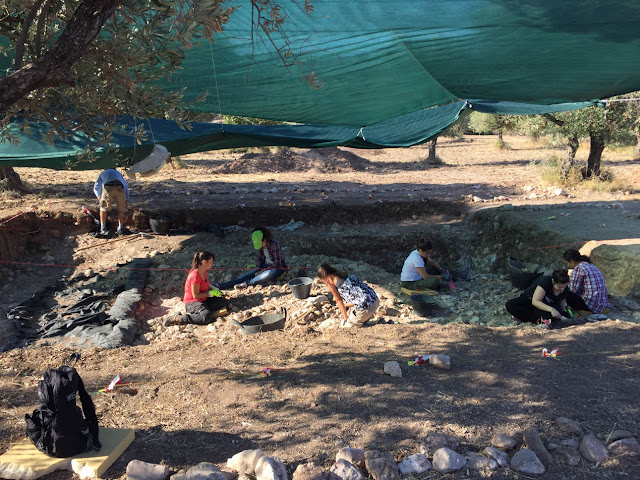 Meeting our Acheulian ancestors and their 'multipurpose tools' at the Rodaphnidia site, Lesbos