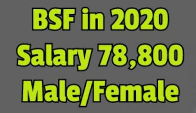 bsf new vacancy 2020