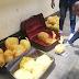 Capturan sujeto de 56 años transportando 40 kilos de droga dentro de maletas