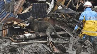 Rescue team Search for survivors in deadly landslide-hit Japan