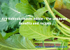Are Kohlrabi leaves edible - The unknown benefits and recipes