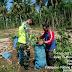 Dibawah terik matahari Babinsa Koramil 07/Pauh Kambar  bantu petani Panen Singkong