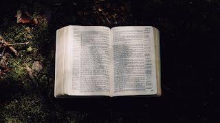 """""""Wyroczki"""", """"Pan mi powiedział"""" a biblijna interpretacja"""