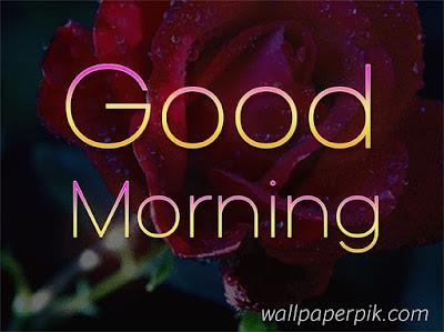 good morning hd wallpaper for whatsapp status