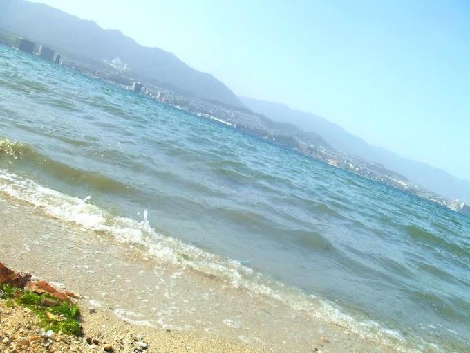 050 #海 #砂浜 #風景 #夏