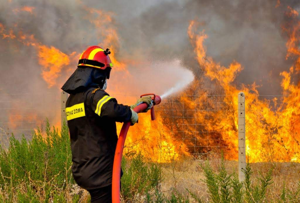 Λάρισα: Πυρκαγιά ξέσπασε ανάμεσα σε Ελάτεια και Πουρνάρι