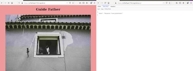 Website Served from ngrok