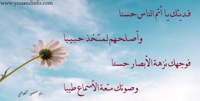 اقتباسات شعرية عن الحسن والمحاسن والجمال
