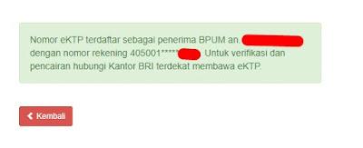 Contoh Formulir Bantuan BPUM Atau BLT UMKM 2,4 Juta