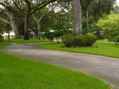 pressure washing palm harbor
