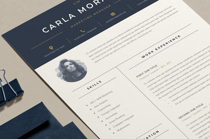 Professional Resume / CV Templates Design 2020