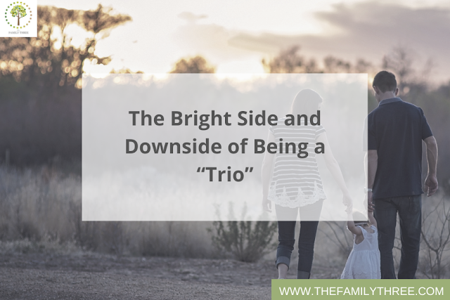 only child one and done blog - the bright side and downside of being a trio