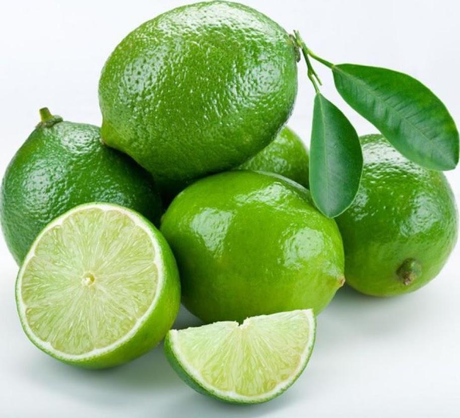Bibit buah jeruk nipis unggul Madiun