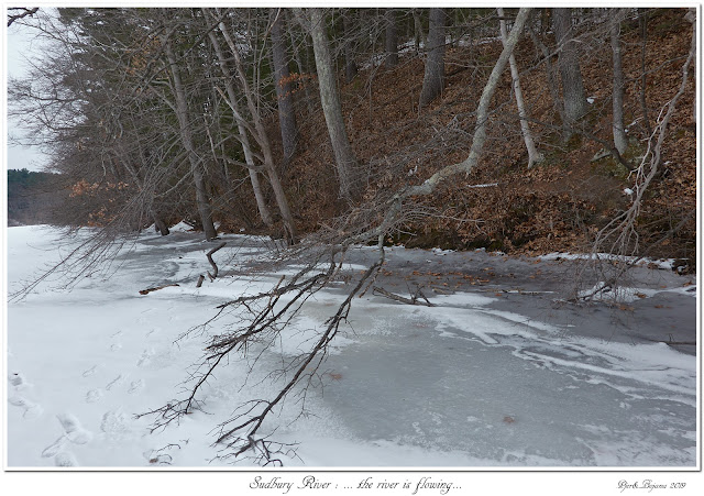 Sudbury River: ... the river is flowing...