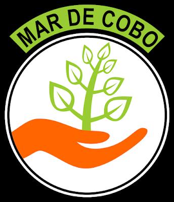 CLUB MAR DE COBO
