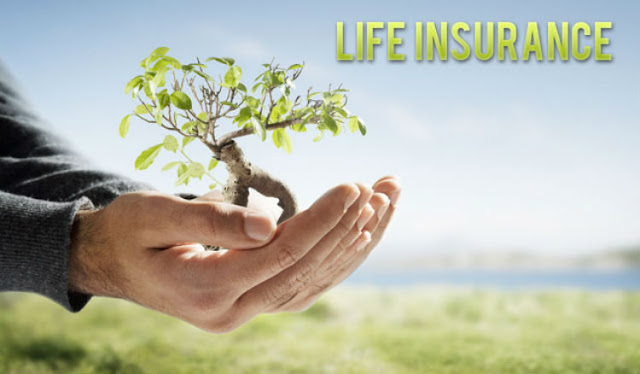 Instant Online Life Insurance Quote Interesting Things You Should Learn Concerning The Instant Life Insurance