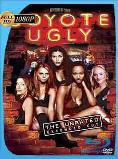Coyote Ugly (2000) HD [1080p] Latino [GoogleDrive] SilvestreHD