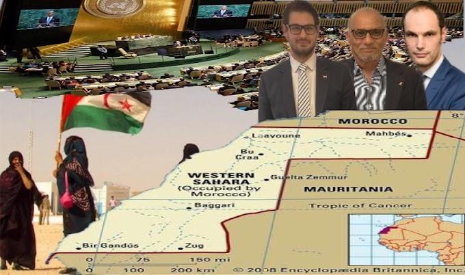 وزير خارجية سلوفينيا : ندعم جهود الأمم المتحدة في إيجاد حل لقضية الصحراء الغربية على أساس حق تقرير المصير.