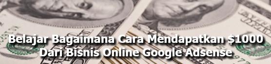 Cara Mendapatkan Dollar Dari Bisnis Online Google Adsense