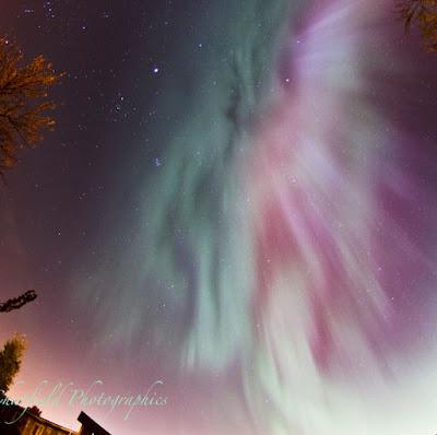 Aqua Purple Aurora Captured Over Saskatoon, Saskatchewan