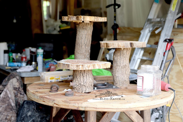 Wood Spool, tree slice and log crudite display, Bliss-Ranch.com