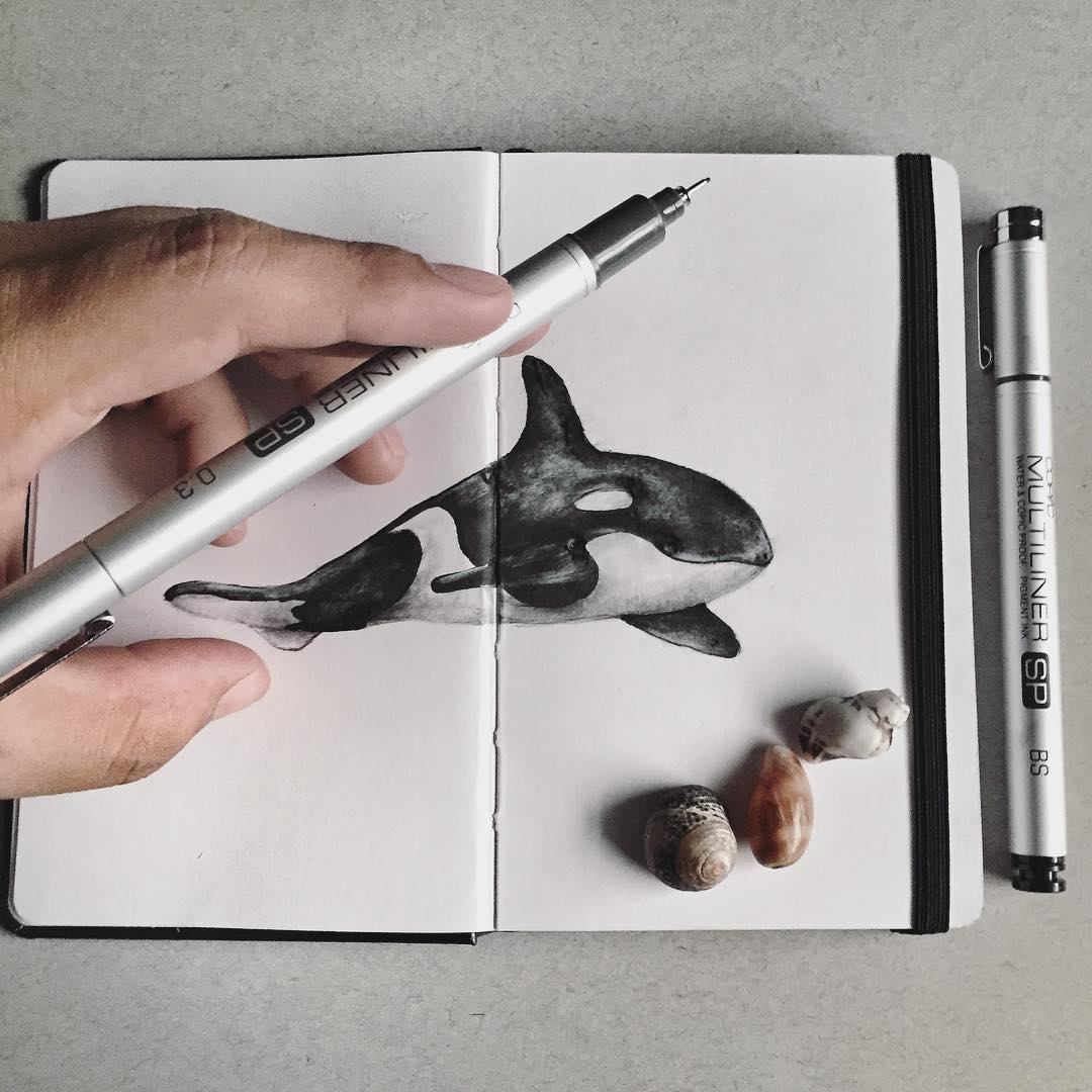 02-Orca-Sketch-Jonathan-Martinez-Art-of-the-Endangered-Paintings-and-Drawings-www-designstack-co