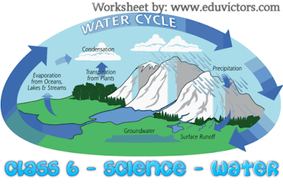 CBSE Class 6 - Science - Chapter 14 - Water (Worksheet) (#cbsenotes)(#eduvictors)