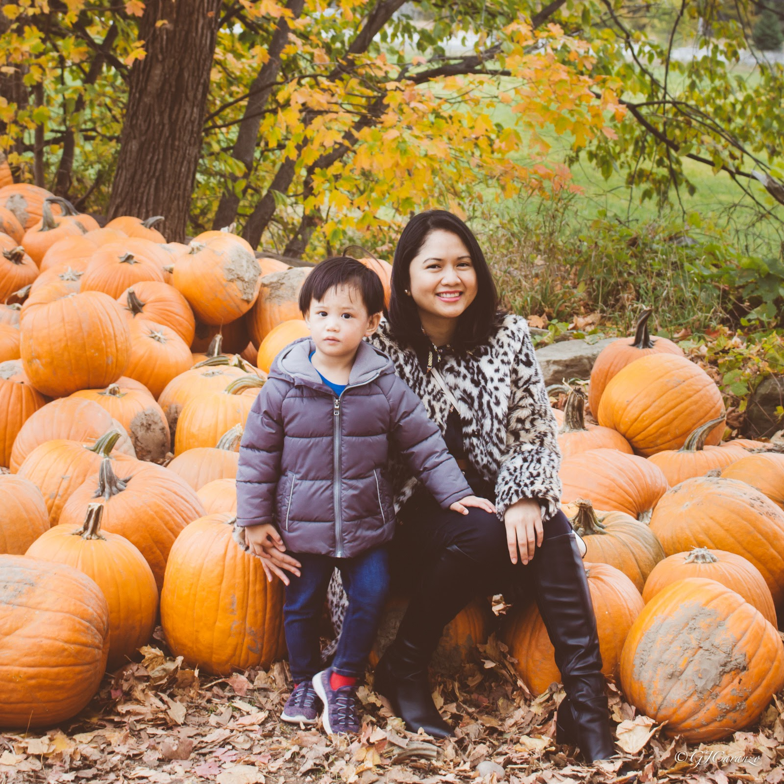Things To Do in Ottawa, Ontario in Fall