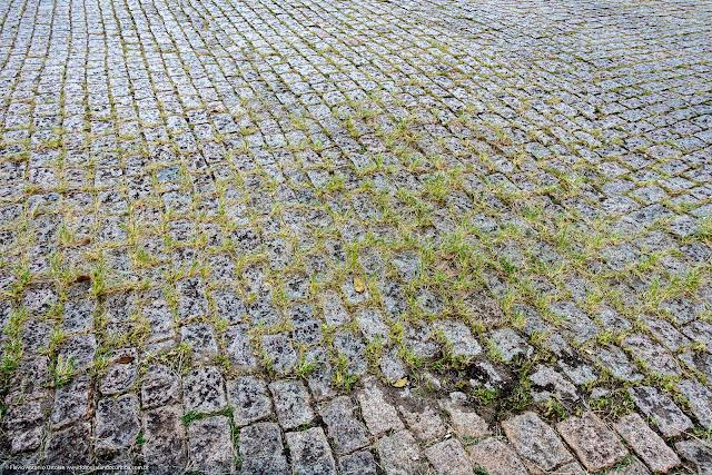 Rua pavimentada com paralelepípedos, com grama crescendo mas frestas
