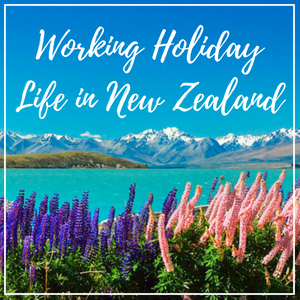 My whirlwind one-year journey as a working holiday visa holder in New Zealand